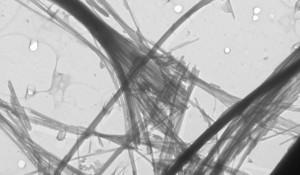 Fibrilles de chrysotile grossies 50 000 fois par microscopie électronique à transmission